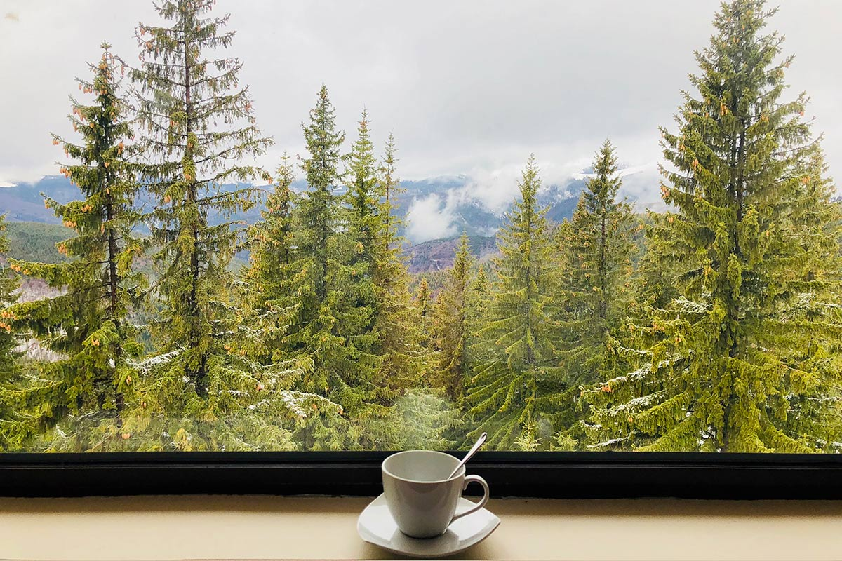 Cup of coffee with a view